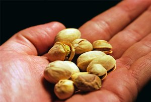 photo_of_handful_of_pistachio_nuts