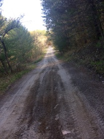 "I was prepared for gravel roads in rural Ontario, like the one at the top. But I was not prepared for (in order) the forest trails, the sand, or the mud, on the ""roads"" that Google maps sent me on! My bike held up admirably, with no broken spokes, despite some rough riding — in Port Hope, Ontario"