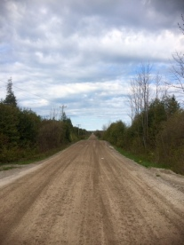 """I was prepared for gravel roads in rural Ontario, like the one at the top. But I was not prepared for (in order) the forest trails, the sand, or the mud, on the """"roads"""" that Google maps sent me on! My bike held up admirably, with no broken spokes, despite some rough riding — in Port Hope, Ontario"""