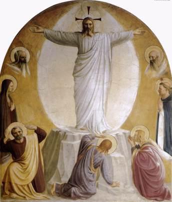 transfiguration-1442