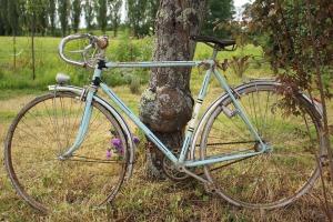 bike-1659336_960_720