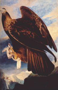 eagle-Audubon,_John_James___Golden_Eagle,_1833-4